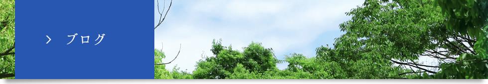 ブログ | 緩衝材・エアキャップ・仕切りのことなら、栃木県の株式会社野口プラモートへ